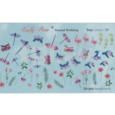 Слайдер Lucky Rose True Colour17